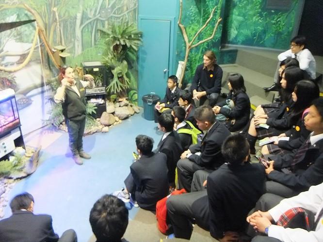 オーストラリア到着後、カランビン動物公園を見学する東野生
